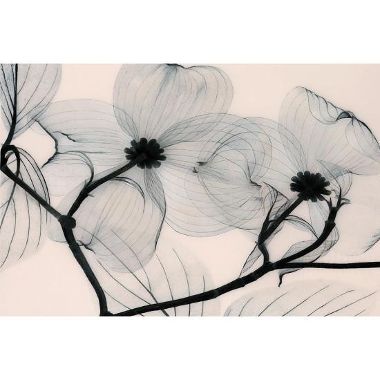Картина вышивка Фантазия в пастельных тонах ручной работы